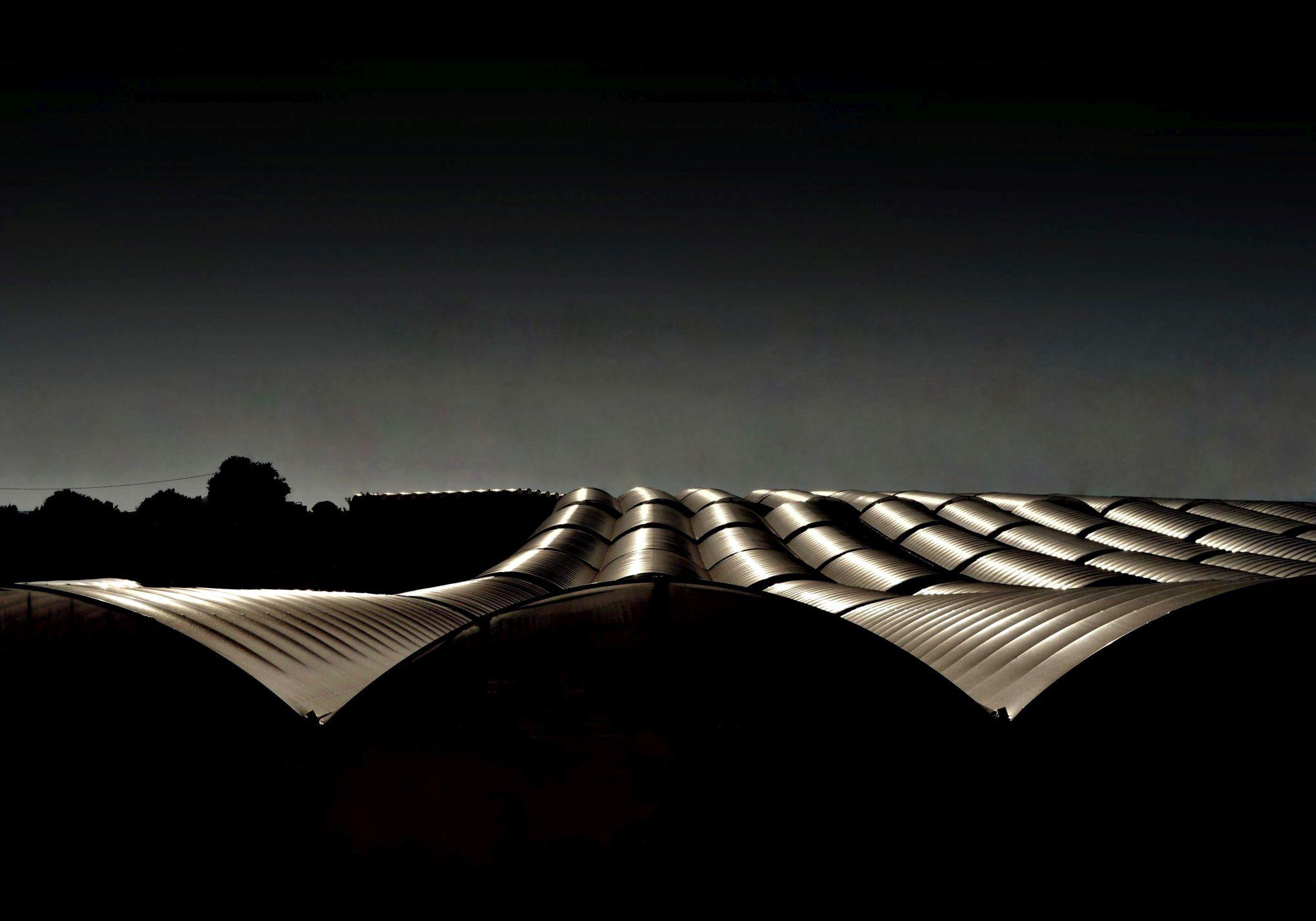 Cose di natura, Nature's Matters #11, Serre/Greenhouses, 2012