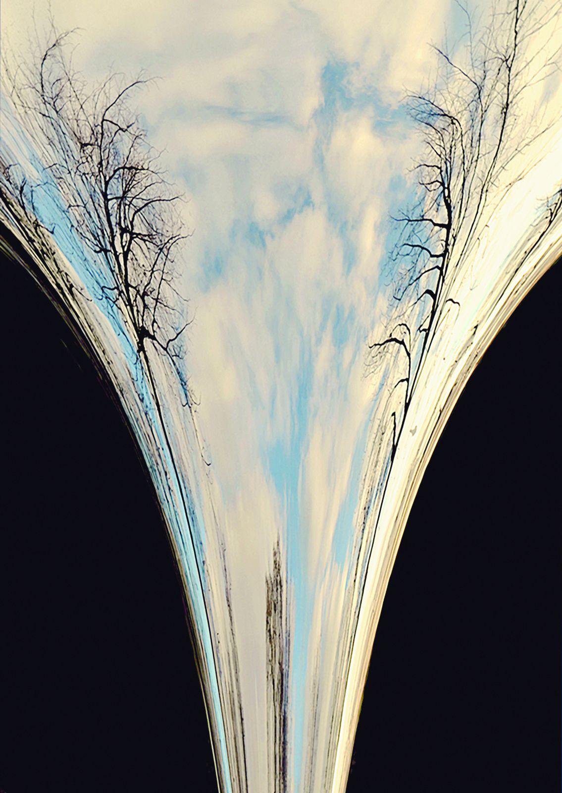 Cose di natura, Nature's Matters #20, Alberi e specchio/Trees and Mirror, 2012
