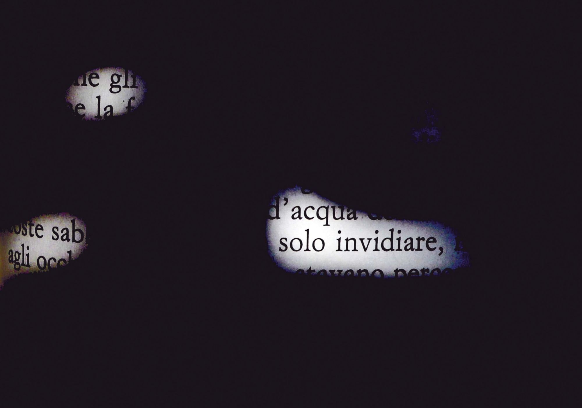 Words #1, Solo invidiare/To Envy Only, 2011